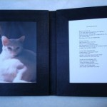 Fine Book Bindings by Dea Sasso, Light of Day Bindery